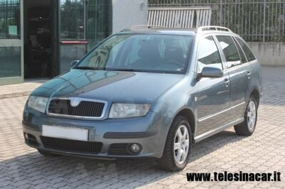 Skoda Fabia Station Wagon TDI Wagon Move usata